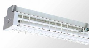Wire Guarded Batten - Twin Tube With Powder Coated Galvanised Wire Guard